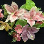 Wafer Paper Flower Supplies